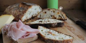 Pane ai semi e bacche di Goji