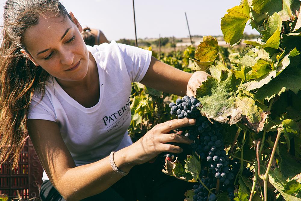 marilina paternò vino vegano - Gluten Free Travel & Living