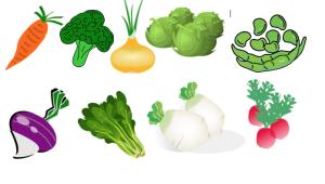 verdure - gluten Free Travel & Living