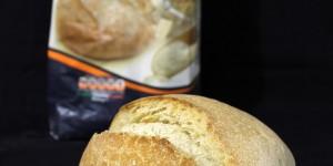 Farine senza glutine: oggi Nutrifree