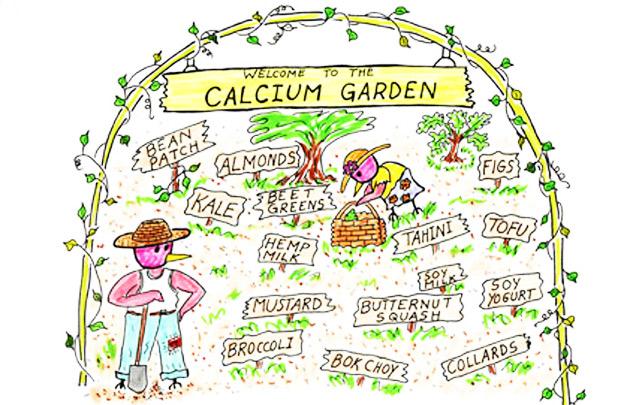 calciio-vegetali_cucina consapevole_Gluten Free Travel & Living