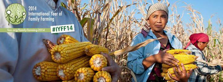 Giornata Mondiale dell'Alimentazione 2014: la nostra Iniziativa!
