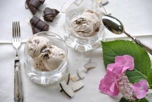 gelato stracciatella al cocco - Gluten Free travel & Living