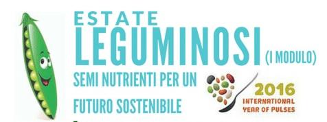 ESTATE LEGUMINOSI_Gluten Free Travel & Living