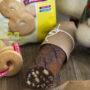 Salame di cioccolato con frollini Hoops Schär