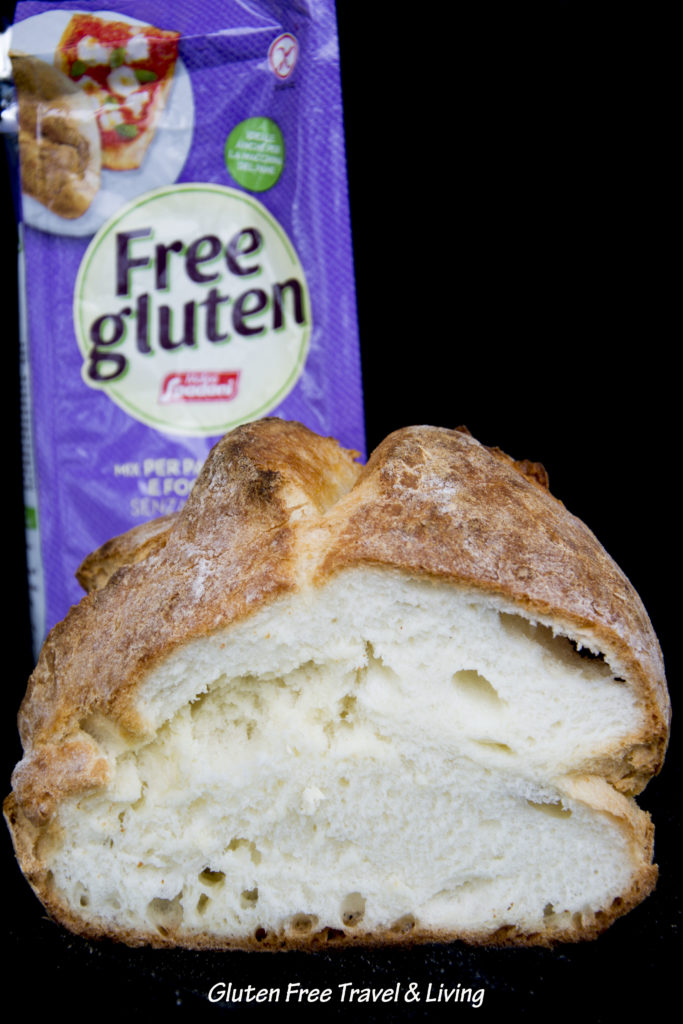 Free Gluten -Gluten Free Travel and Living