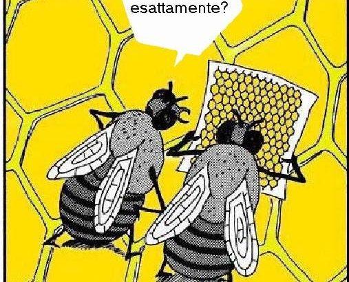 10 ragioni per amare le api oltre al miele