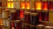 Tipi di miele: proprietà, benefici e utilizzo in cucina del nettare degli dei