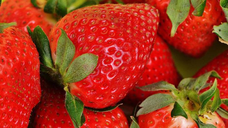 Le fragole: curiosità, storia, poesie e canzoni