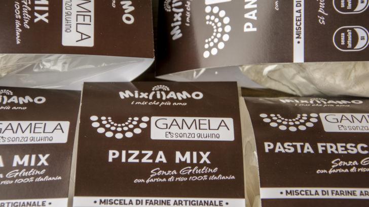 Mix di farine senza glutine Gamela