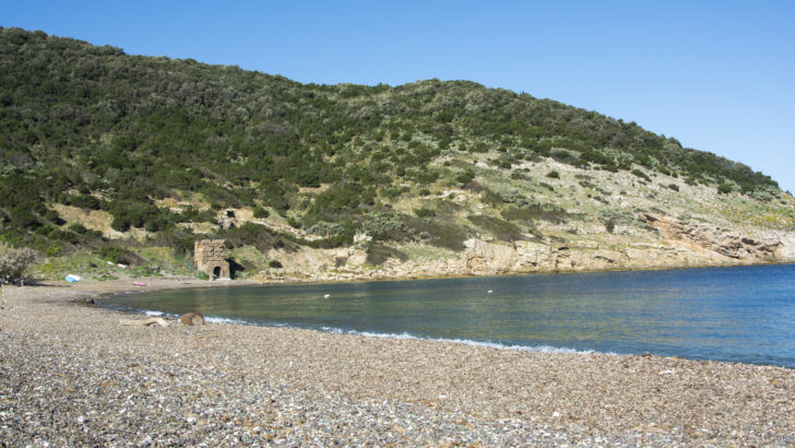 Isola d'Elba senza glutine in camper