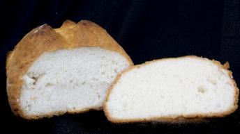 Koilia; le farine senza glutine
