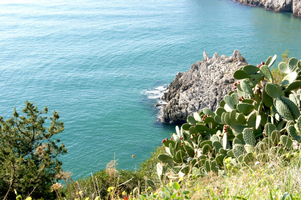 Gaeta senza glutine - Gluten Free Travel and Living